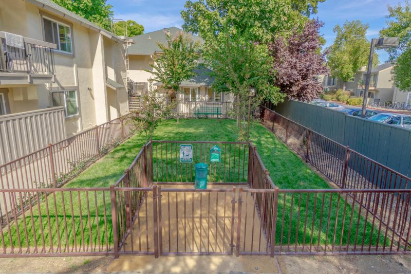 The Trees Apartments Davis - Fenced Dog Park